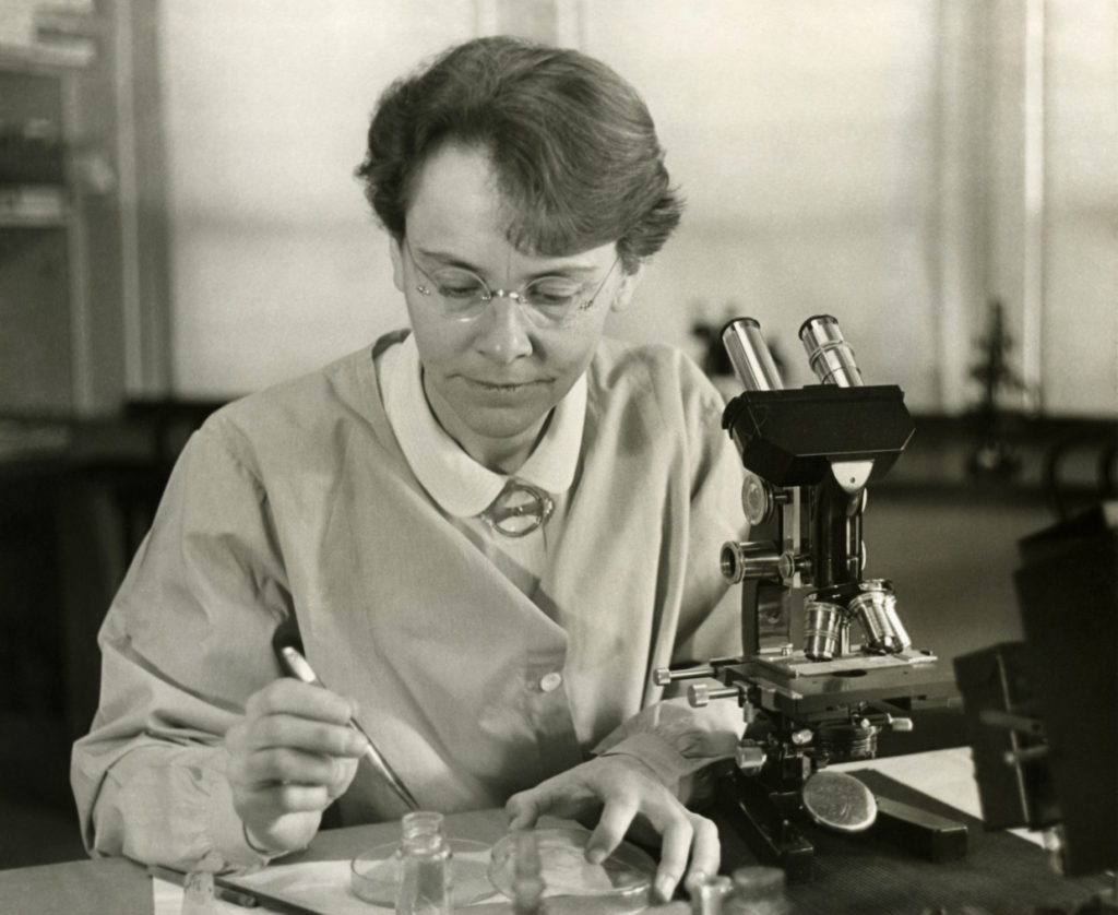 Barbara McClintock - scientific women