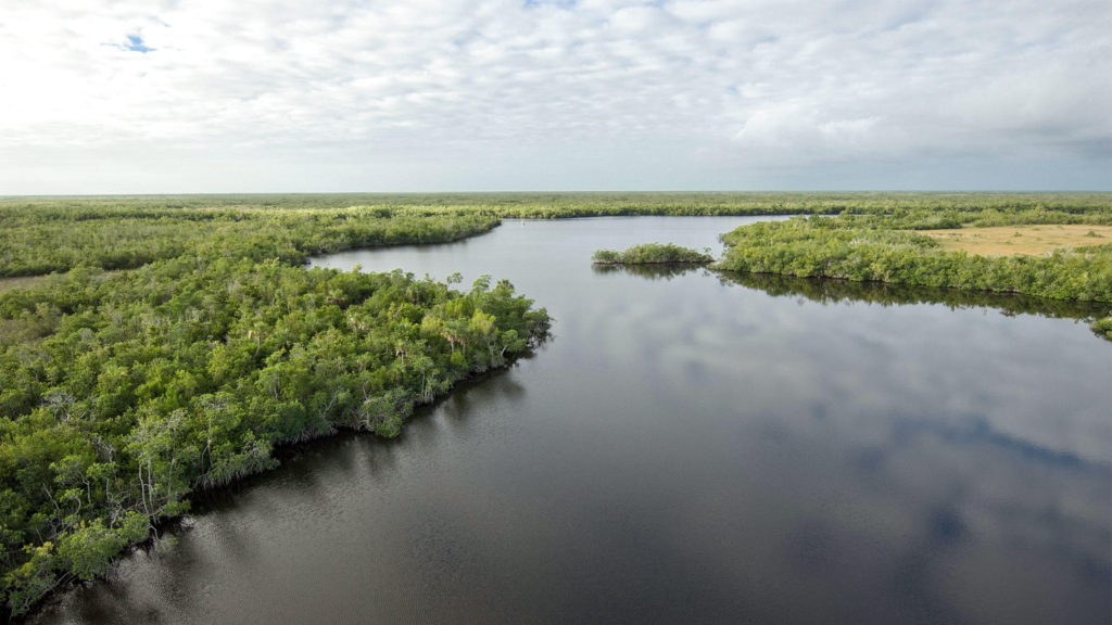Everglades - Natural Resources