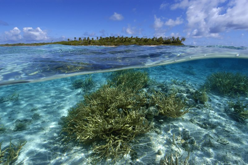 Impact on Vital Resources - Rising Sea Levels