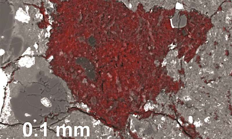 Scientists found a Tiny Fragment of a Comet inside a Meteorite