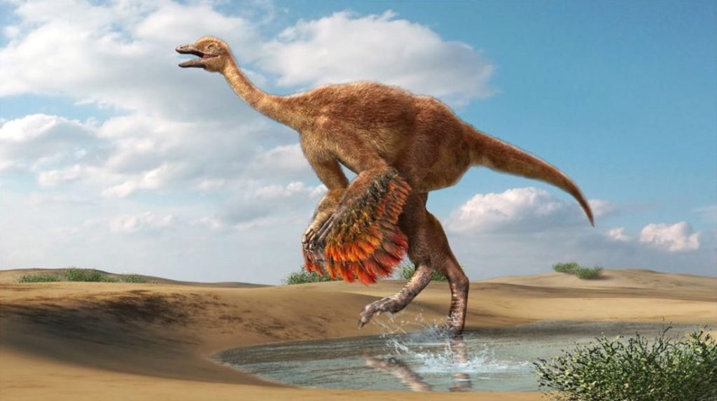 6 Diseases that Affected Dinosaurs
