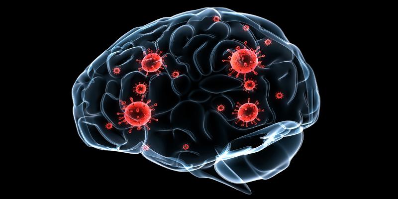 Cryptococcosis Grows Mold on Your Brain - Foodborne Illnesses
