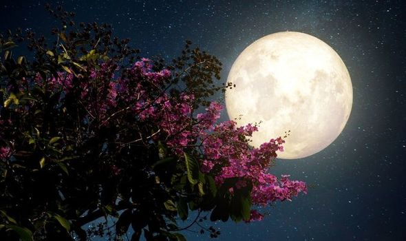 Flower Moon (7th May) - Astronomical Events